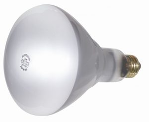 Ultra Life Reflector Light Bulbs Rough Service - 20,000 Hours Long Life
